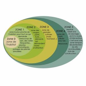 zonage design