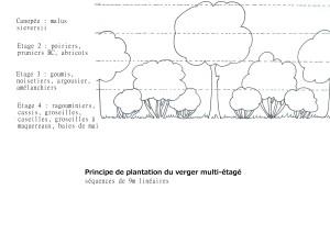 principe plantation pré-verger