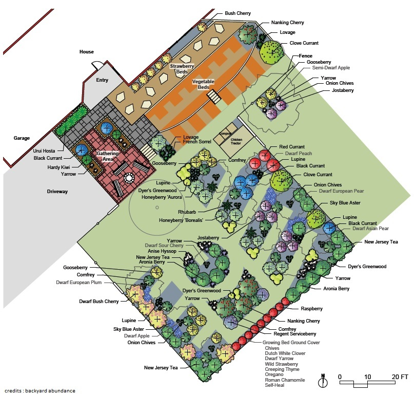 Potager prise de terre for Potager permaculture plan